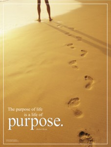 What is Your Purpose - Find Your True Desire and Passion in Life