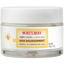 burts bees Radiance Night Cream
