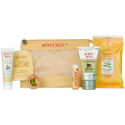 Burts bees Lifes an Adventure Gift Pack