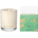 Ecoya Mini Soy Candle - Fresh Pine