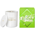 Ecoya Soy Candle - Metro Jar Soy Candle - Lime & White Jasmine LIMITED EDITION