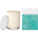 Ecoya Madison Candle - Coastal Kowhai Fig