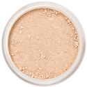 Lily Lolo Concealer - Caramel