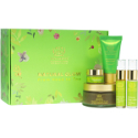 Tata harper Natural Glow from Head to Toe Gift Kit